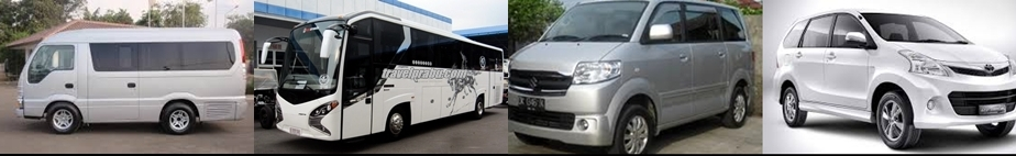 ELF & BUS & APV- AVANZA